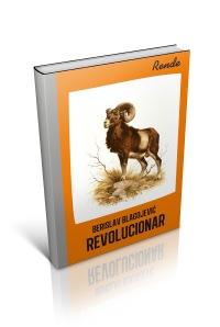 Berislav Revolucionar